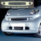 Grelha SMART ForTwo RS em fibra
